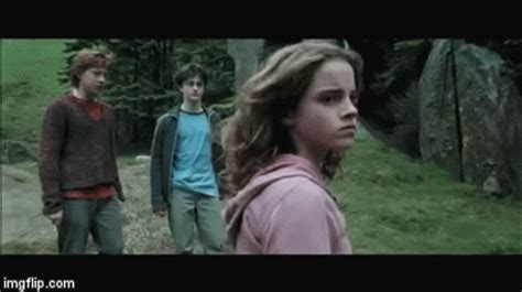 hermione punches draco - Imgflip